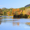 Little Long Pond And Bubbles Mount Desert Island Maine by Ken Brown