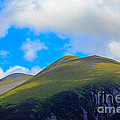 Little Man Skiddaw And Ullock Pike by Louise Heusinkveld
