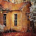 Little Old School House II by Julie Dant