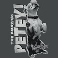 Little Rascals - Amazing Petey by Brand A