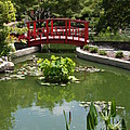 Little Red Bridge  by Christiane Schulze Art And Photography