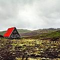 Little Red Cabin by Florian Rodarte
