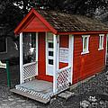 Little Red School House by Richard J Cassato