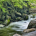 Little River Scenery E226 by Wendell Franks