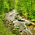 Little River - Smoky Mountains by Bob and Nancy Kendrick