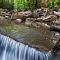 Little River by Walt Sterneman