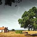 Little Rural House by Carlos Caetano