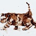 Little Tiger by Zaira Dzhaubaeva