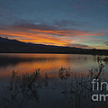 Little Washoe Sunset II by Dianne Phelps