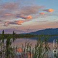 Little Washoe Sunset IIi by Dianne Phelps