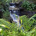 Little Waterfall by Rich Fatalo