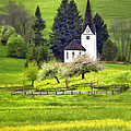 Little White German Church by Sharon Foster