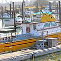 Little Yellow Boat by Lisa Billingsley
