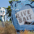 Live Bait Sign And Muffler Man Statue by Scott Campbell