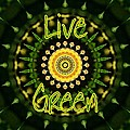 Live Green 1 by Sheri McLeroy
