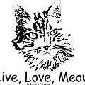 Live Love Meow by Robyn Stacey