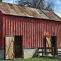 Livestock Barn by Liane Wright