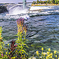 Living On The Edge Niagara Falls by LeeAnn McLaneGoetz McLaneGoetzStudioLLCcom