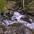 Living Waters by Bill Sherrell