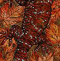 Lizard In Red Nature - Elena Yakubovich by Elena Yakubovich