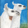 Llamas Tracks Farm Ranch Animal Art Camelid by Cathy Peek