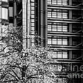 Lloyd's Of London 05 by Rick Piper Photography