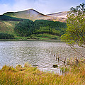 Llyn Cwellyn In Snowdonia National Park Towards M by Matthew Gibson