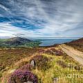 Llyn Peninsula by Adrian Evans