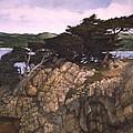Lobos Lookout by Tom Wooldridge