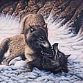 Lobos by Ricardo Chavez-Mendez