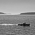 Lobster Boat And Islands Off Acadia National Park In Maine by Keith Webber Jr