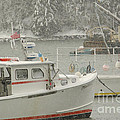 Snowy Lobster Boats by Alana Ranney