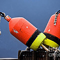 Lobster Pot Buoys by Jerry Fornarotto
