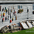 Lobster Pots And Buoys by Phyllis Taylor