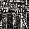 Lobster Shack by Diana Powell