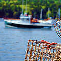 Lobster Trap In Maine by Olivier Le Queinec