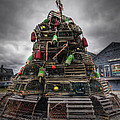 Lobster Trap Tree by Eric Gendron