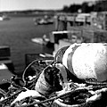 Lobster Traps 07 by Timothy Bischoff