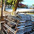 Lobster Traps Caye Caulker Belize by Lee Vanderwalker