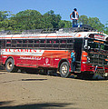 Local Bus by Erick