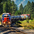 Local Train by Robert Bales
