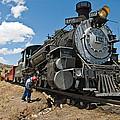 Locomotive Engineer by Robert VanDerWal