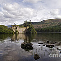 Loch-an-eilein Castle - D003341 by Daniel Dempster