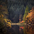Loch Ard In The Fall by John Farnan