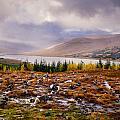 Loch Loyne Cairns by Mark Llewellyn