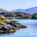 Loch Nan Uamh Viaduct 2 by Chris Thaxter