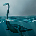 Lochness Monster by Spencer Sutton