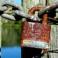 Lock And Chain by Ed Weidman