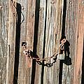 Locked Wood by Cora Wandel