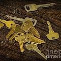 Locksmith - Rejected Keys by Paul Ward